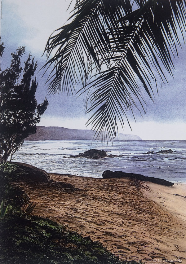 Haleiwa.jpg