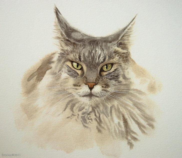 Cat paintings-1.jpg