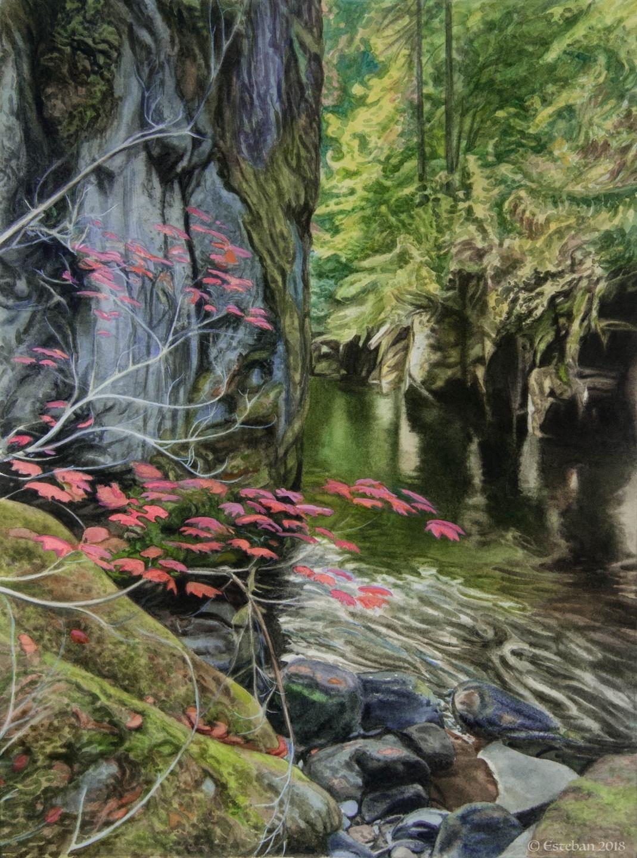 """Brietenbush River ~ Watercolor  11x17"""" Sold"""