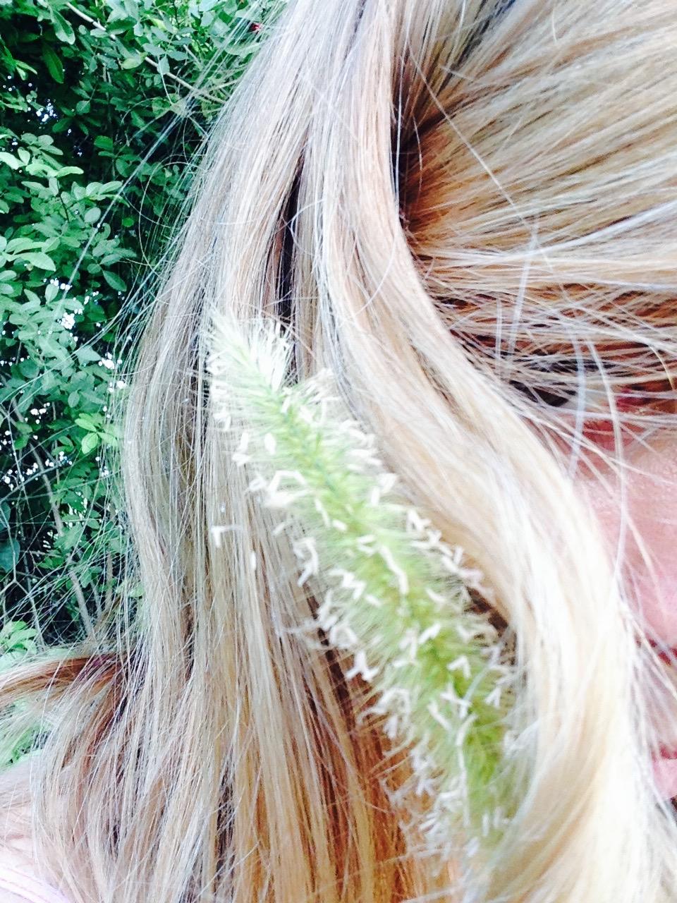 HairGrainFlowerSeed