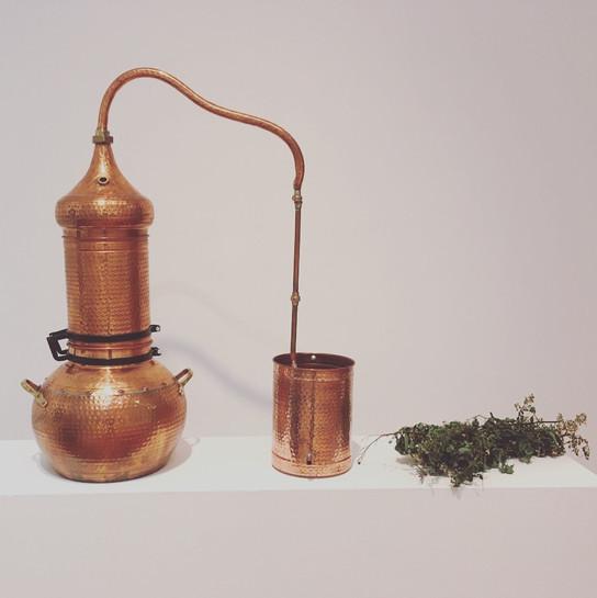 Public Distillation, Hartford 2019