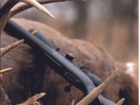 AmChar Wholesale now distributing Winchester Ammunition