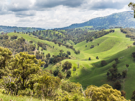 Australian hunting and shooting contributes $2.4 billion a year