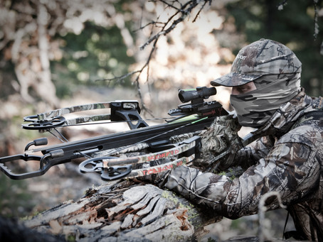 ALL ABOUT CROSSBOWS …