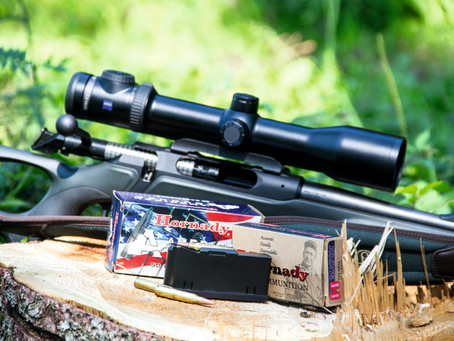 Sauer loads up – new mini-calibers available