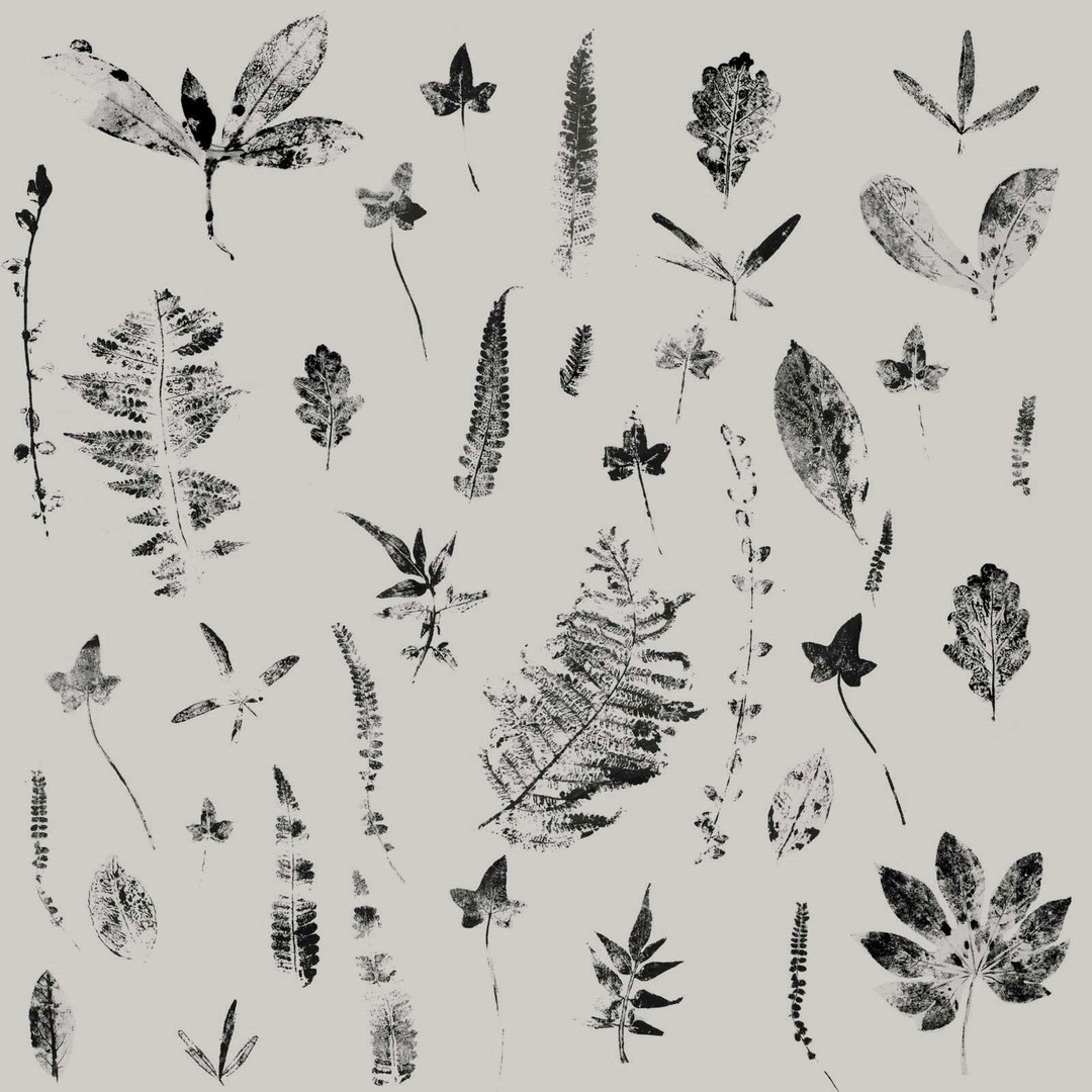 Brand identity Pattern by Sophie Ffion Studio