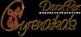 Cyrenaika's Devon Rex