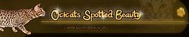 Link spottedbeauty