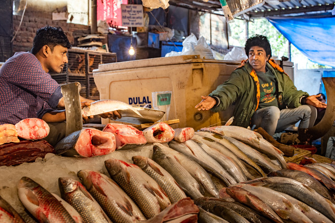 Fishmongers, CR Park, New Delhi