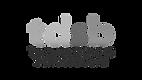 TDSB Logo.png