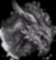 Baasterox_alpha.png