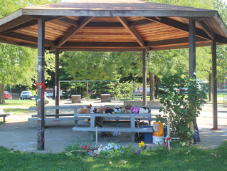 Gazebo where Tamir Rice was fatally shot to be removed