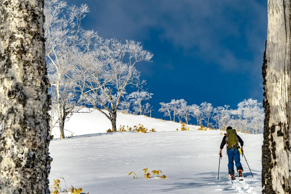 冬-11.jpg