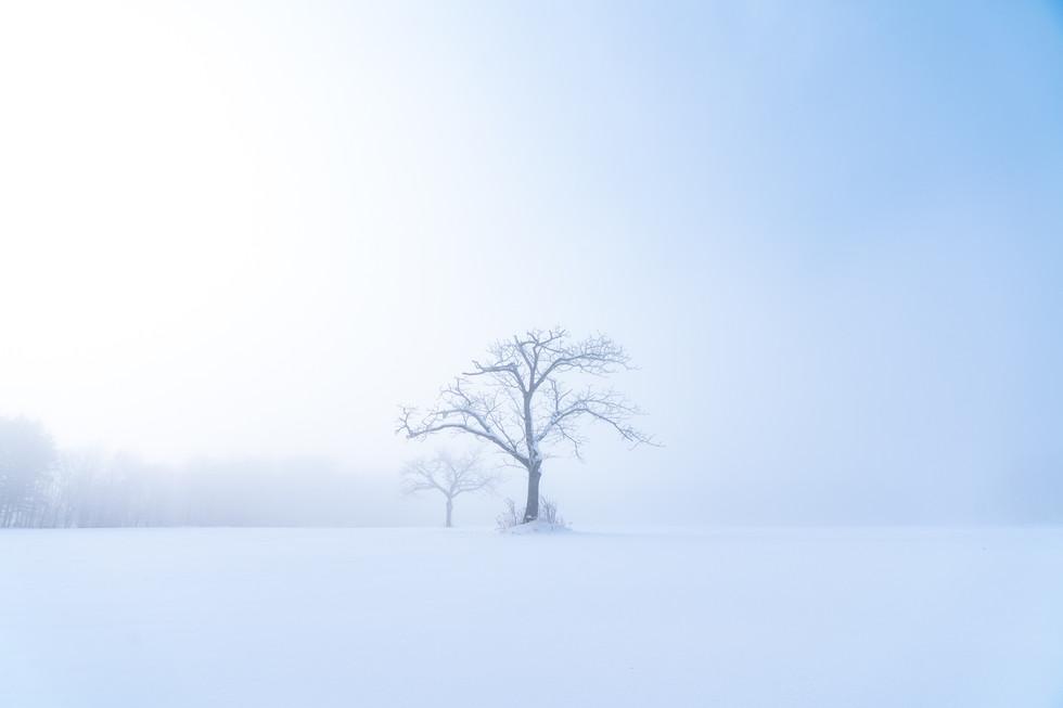 冬-27.jpg