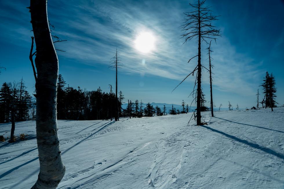 冬-14.jpg