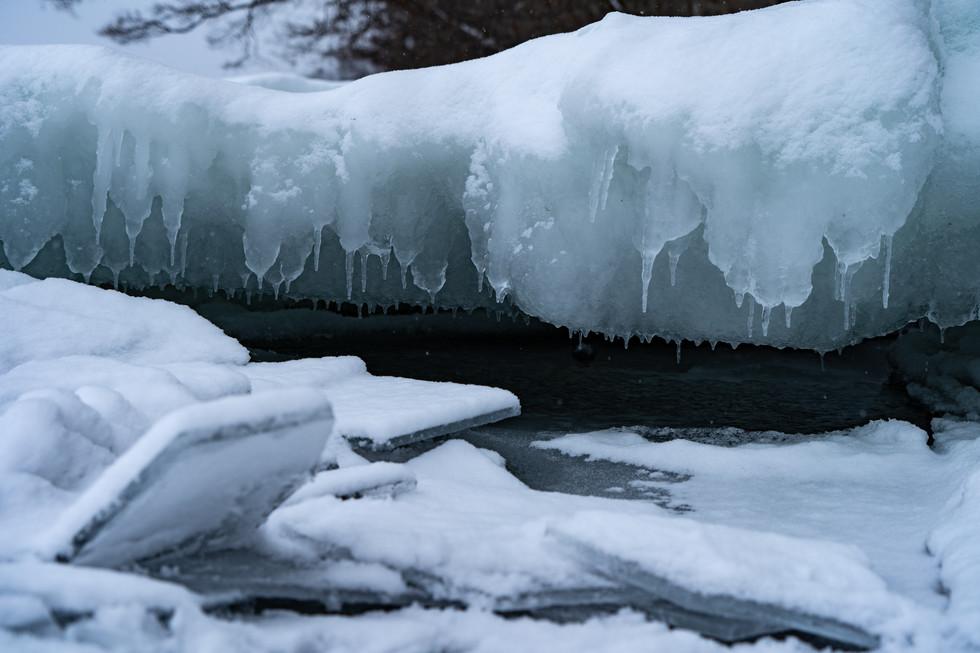 冬-3.jpg