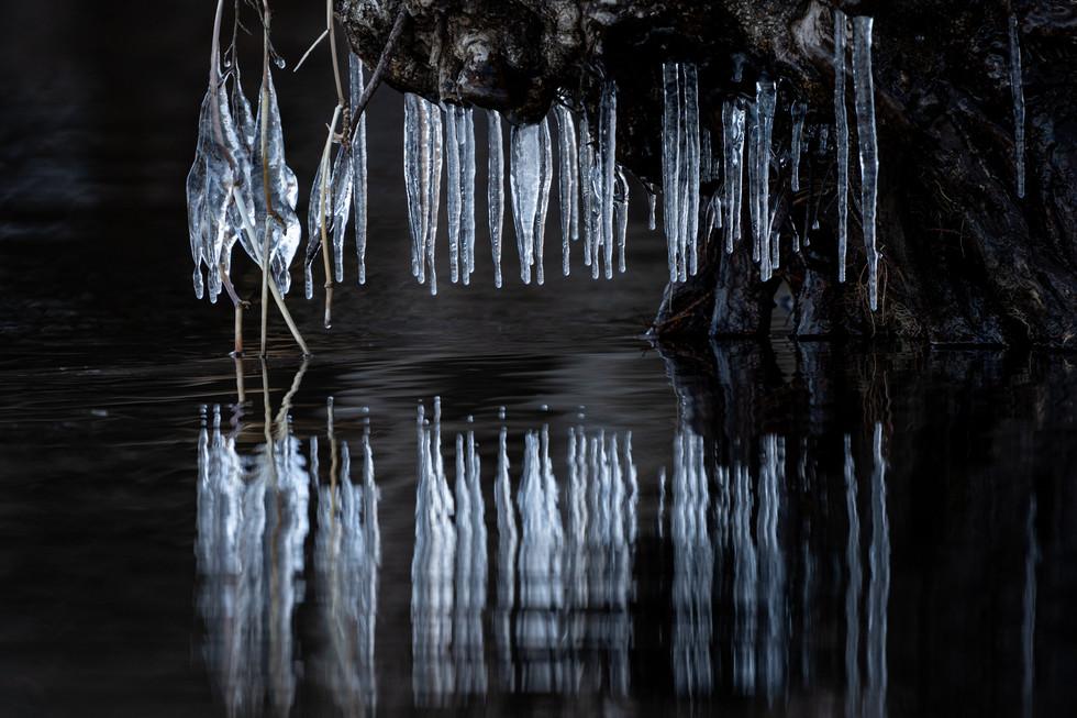 冬-20.jpg