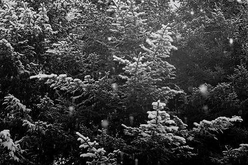 冬-18.jpg