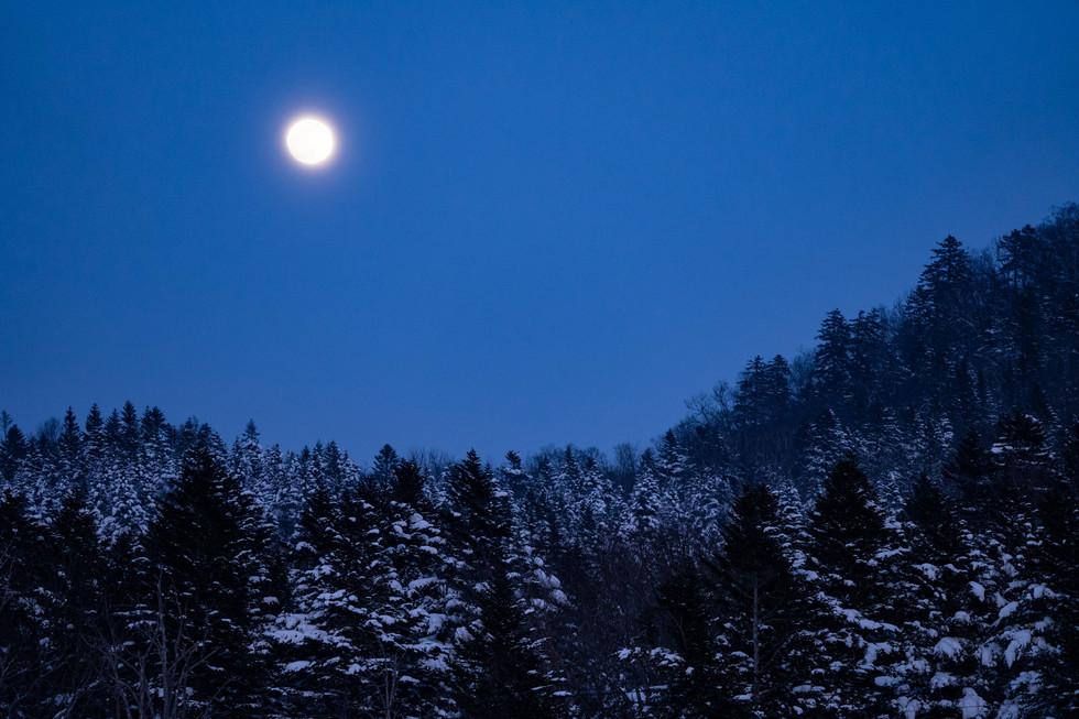 冬-31.jpg