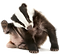 Badger%25201_edited_edited.png