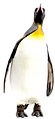 penguin%205_edited.png
