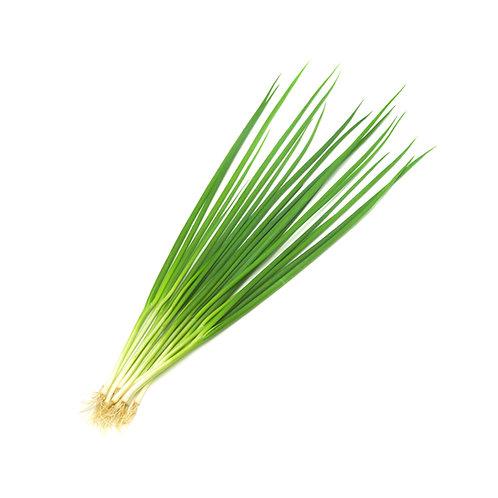 Green Onion/Sliced