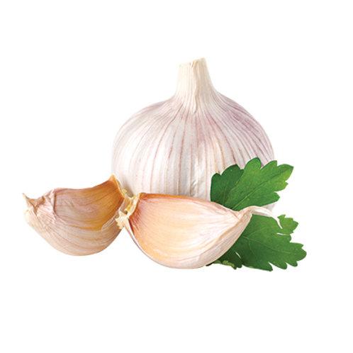 Garlic/Puree/Deep fried