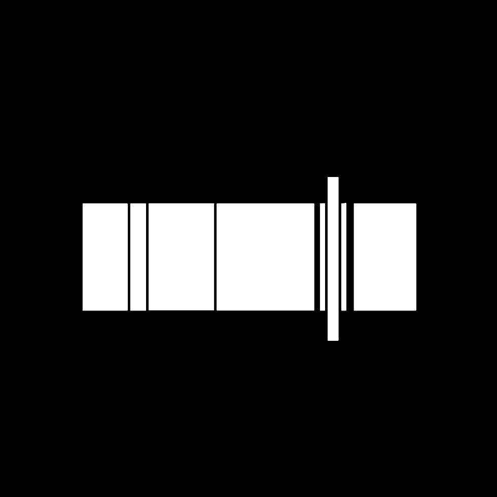 Stitcher white Logo