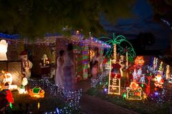 Christmas Lights Wonderland