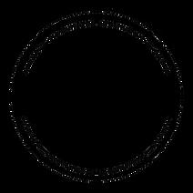 blackstar-film-festival-logo.png