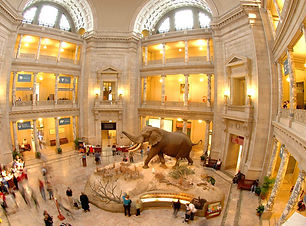 smithsonian-museum-natural-history.jpg