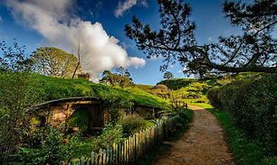 Matamata (Hobbiton) New Zealand 16.jpg