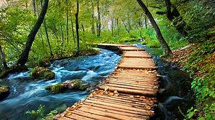 croatia_plitvice-lakes_boardwalk.jpg