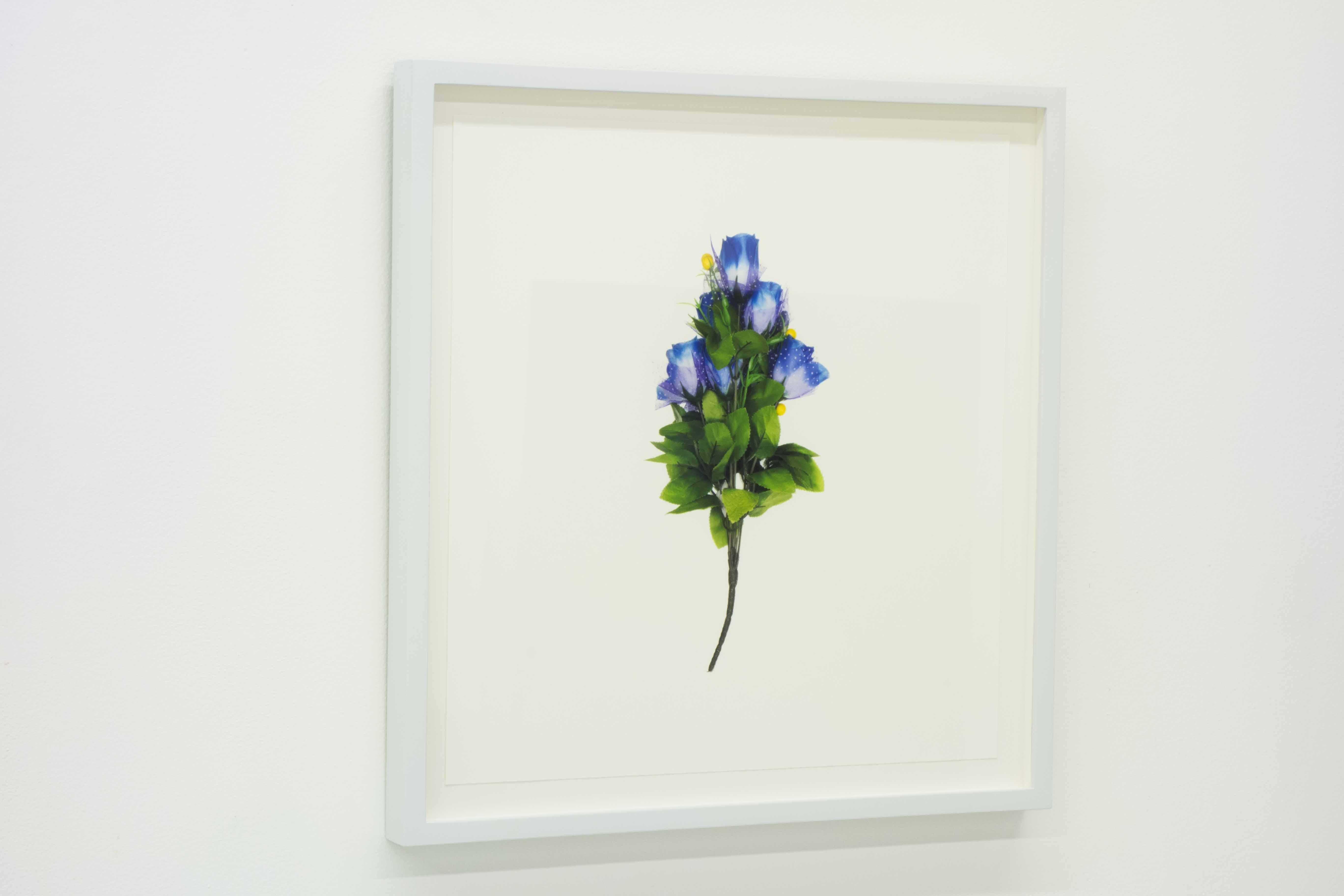 FLOWER PORTRAIT (blue) 2014