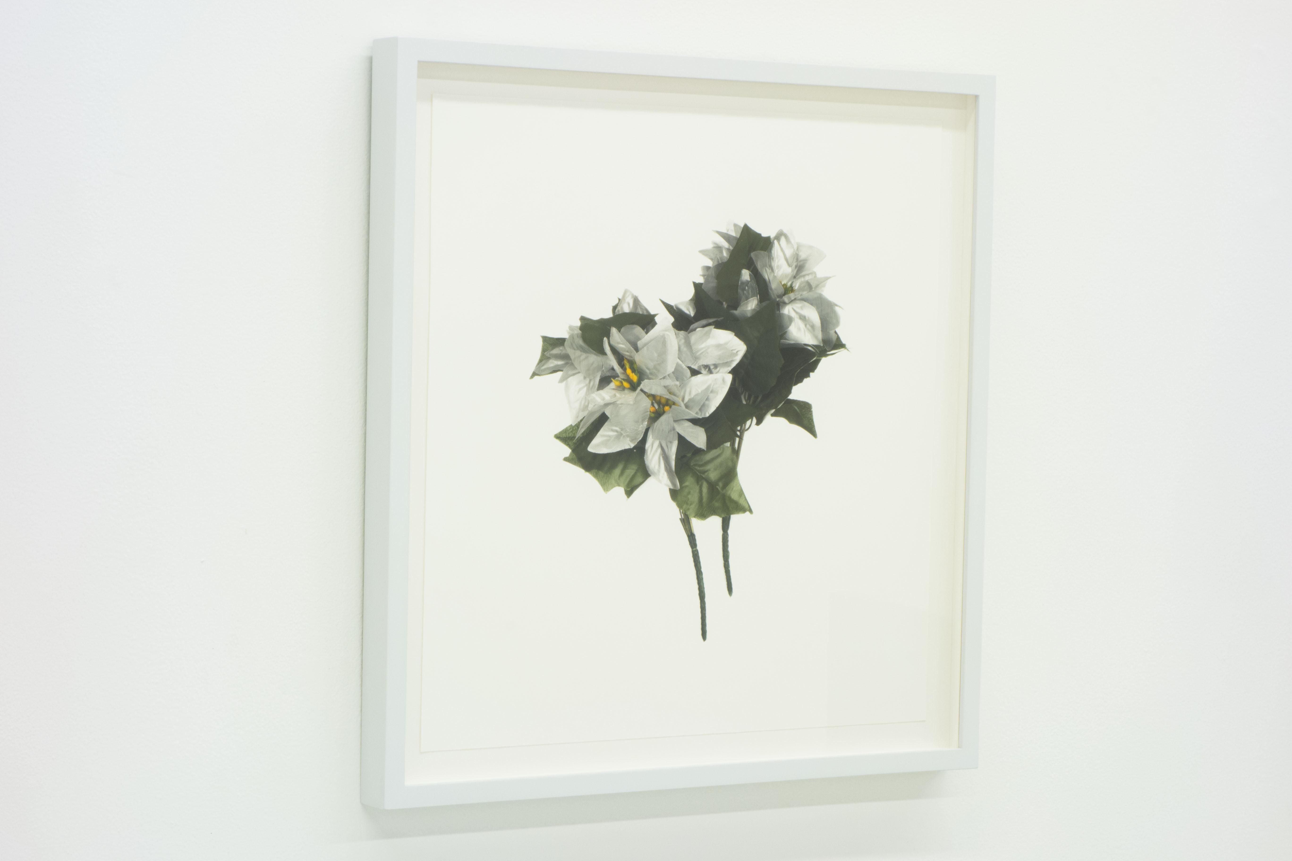FLOWER PORTRAIT (silver) 2014