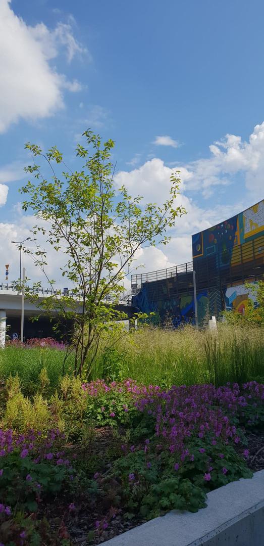 Projekt zagospodarowania terenu wokół kompleksu biurowego HIGH FIVE w Krakowie przy ulicy Pawiej