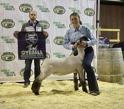 Grand Overall Ewe Show A 3rd Overall Show B Johnson Co. - Kendal Rosen.jpg