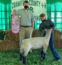Crwford County Reserve Grand market Lamb