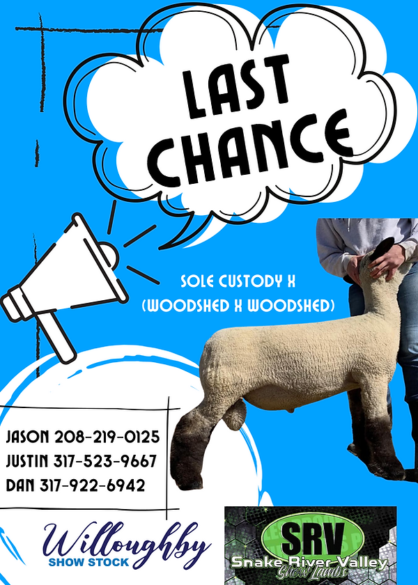 Willoughby - Last Chance.png