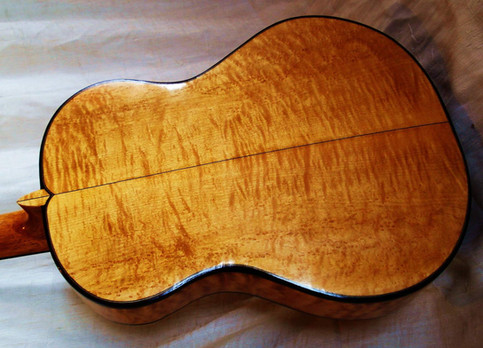 Classical and Flamenco Guitars by G Weigert