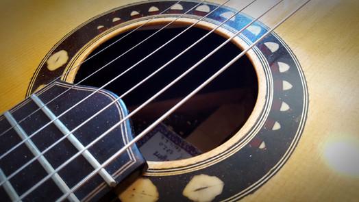guitar rosette