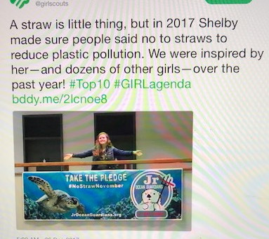#NoStrawNovember setting the #GirlScouts #G.I.R.L. Agenda and Crushed it in 2017!