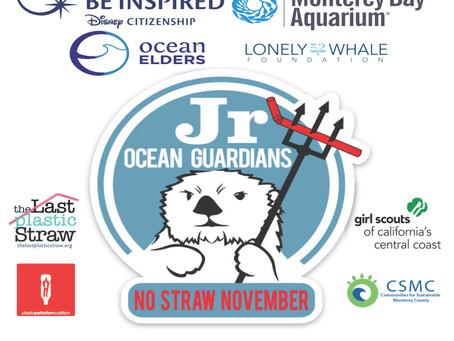 Jr Ocean Guardians #DisneyBeInspired/YSA Grant!  No Straw November