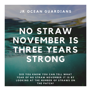 No Straw November Patches!