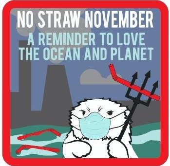 NO STRAW NOVEMBER ~ A Reminder to Love the Ocean and Planet
