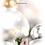 Thumbnail: Funeral Programme 006