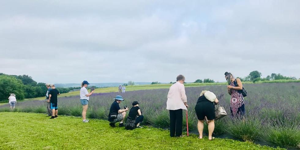 July 10: U-Pick Lavender Bouquet Class, 2 pm