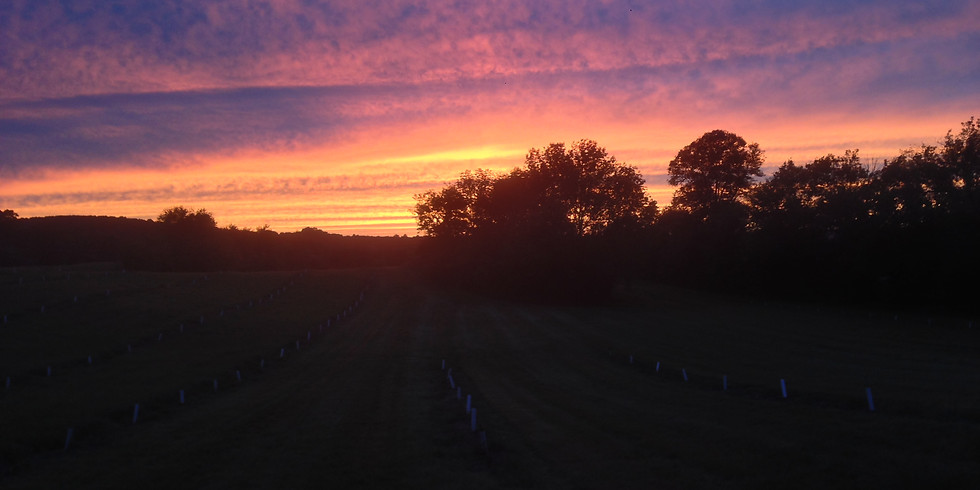 Sunset Tour and Farm To Table Dinner- Private Group