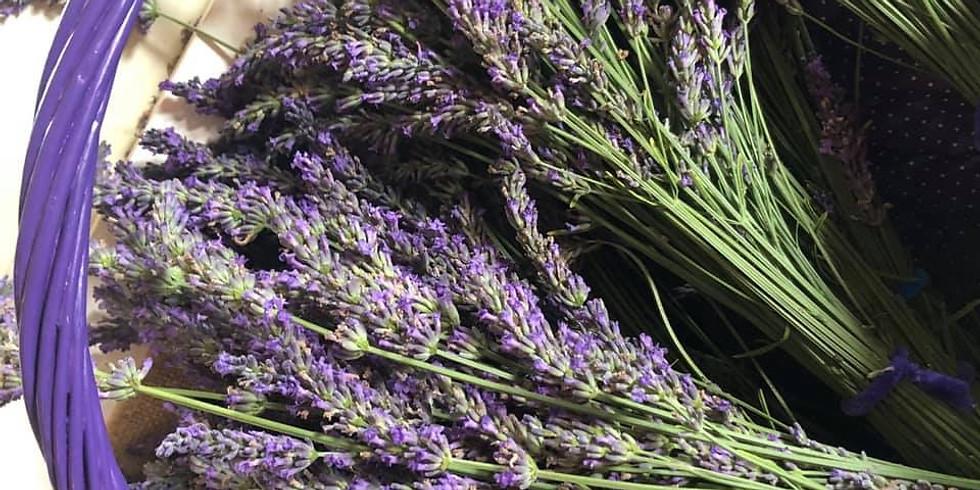 July 4: U-Pick Lavender Bouquet Class, 2 pm