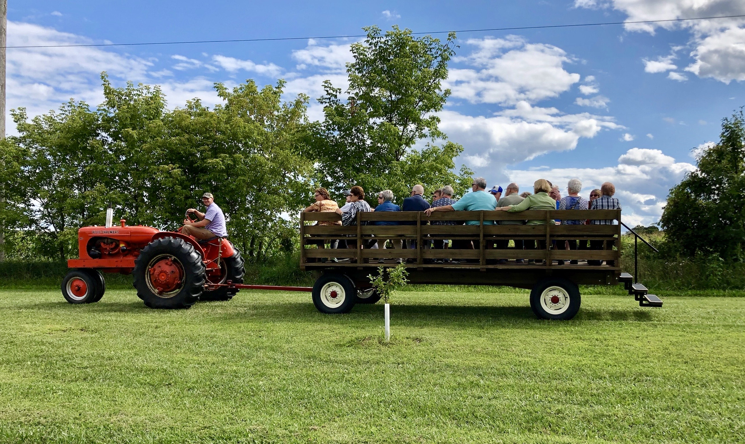 wagon pic